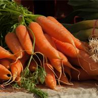 Agro-Market24 Internetowa Giełda Rolna